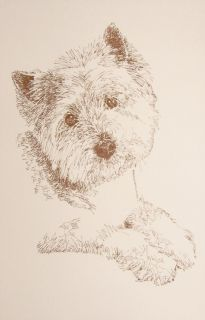 WEST HIGHLAND WHITE TERRIER ART #57 Kline Your dogs name added free