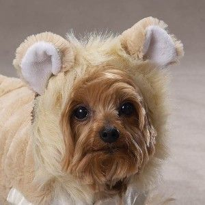 New Lil Lion Plush Halloween Dog Costume Clothes